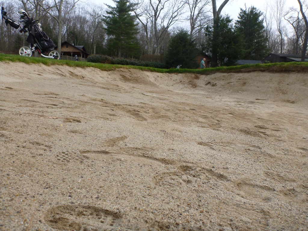 My home course became Pine Valley-like in late November, when our superintendent put bunker rakes away till spring.